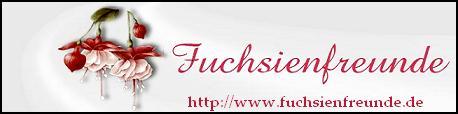 Forum für Gartenliebhaber,Kübelpflanzen-und  Fuchsiensammler Wenn Sie auf unserer Seite eine bestimmte Information nicht finden, steht Ihnen unser Experten-Team per Mail oder über das Forum zur Verfügung.